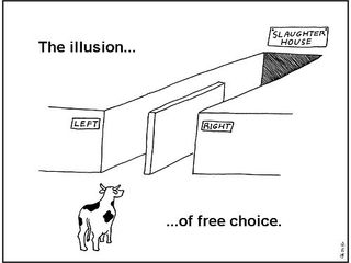 free-will-illusion